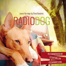radiodog